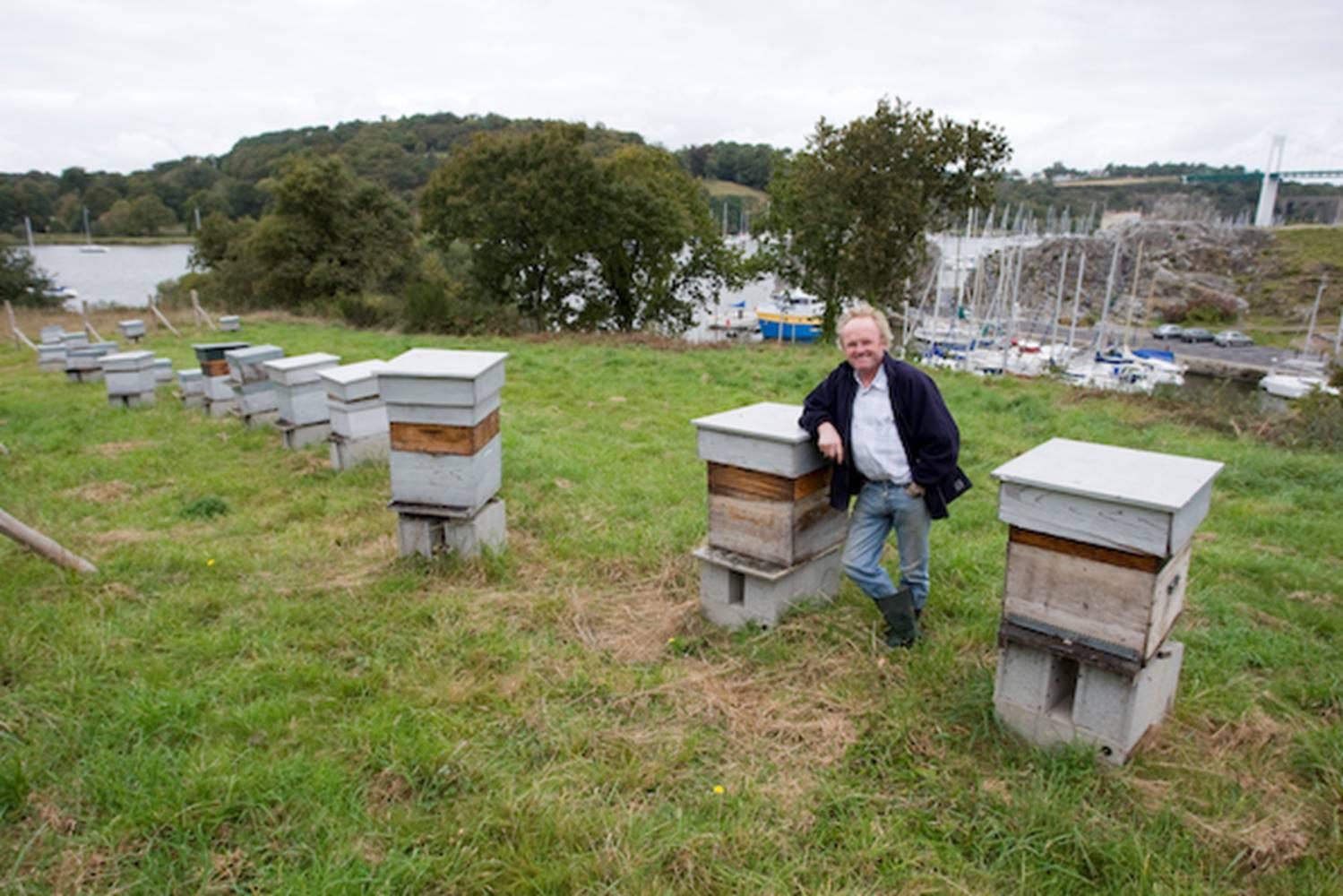 Remy Lucas-Maison de l'abeille-La Roche-Bernard ©