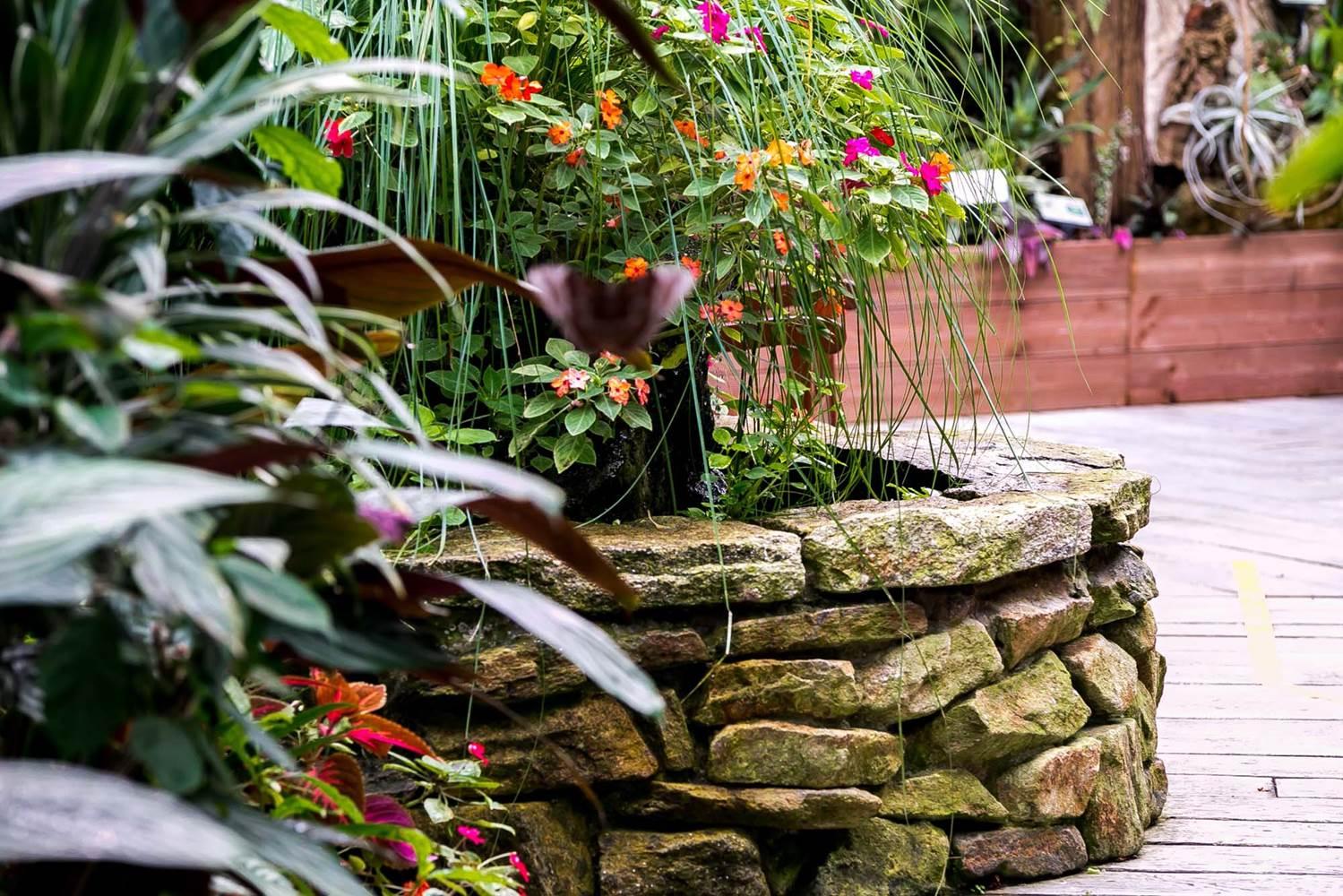 jardin-aux-papillons-morbihan-bretagne-sud-36 © Meero
