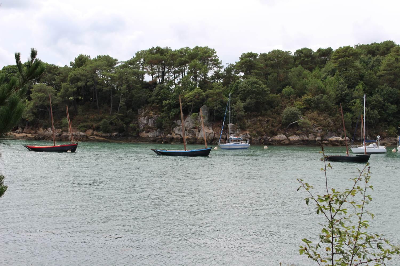 De magnifiques bateaux