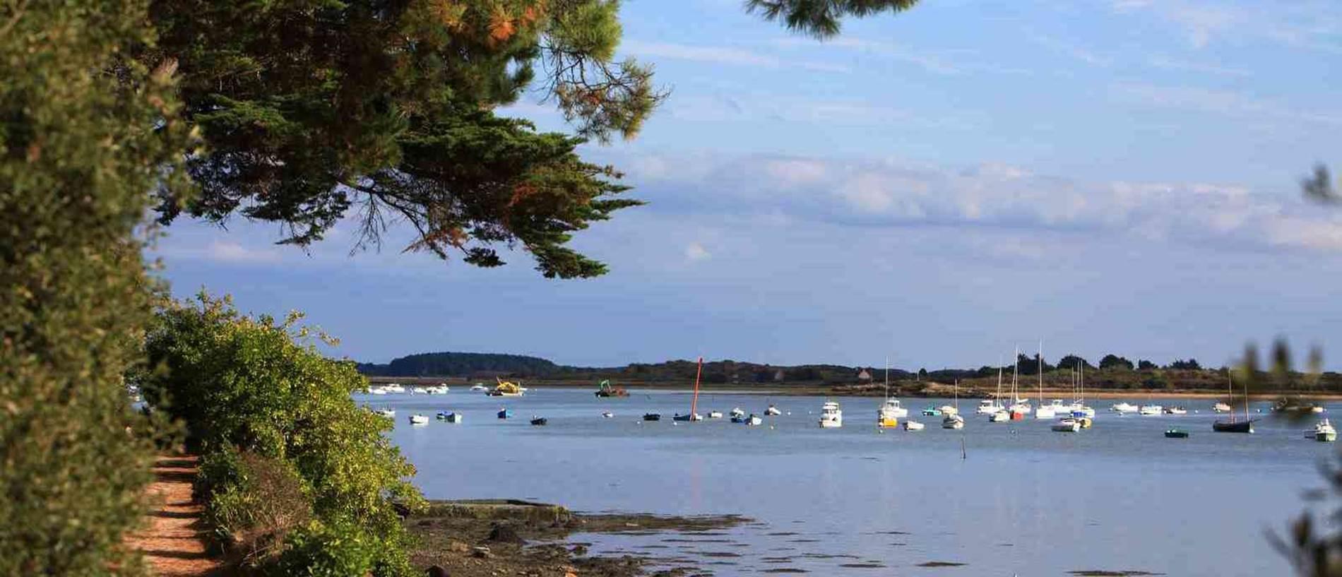 RANDO-SENE © CDT56-MS-Golfe du Morbihan-09-2009 (11)