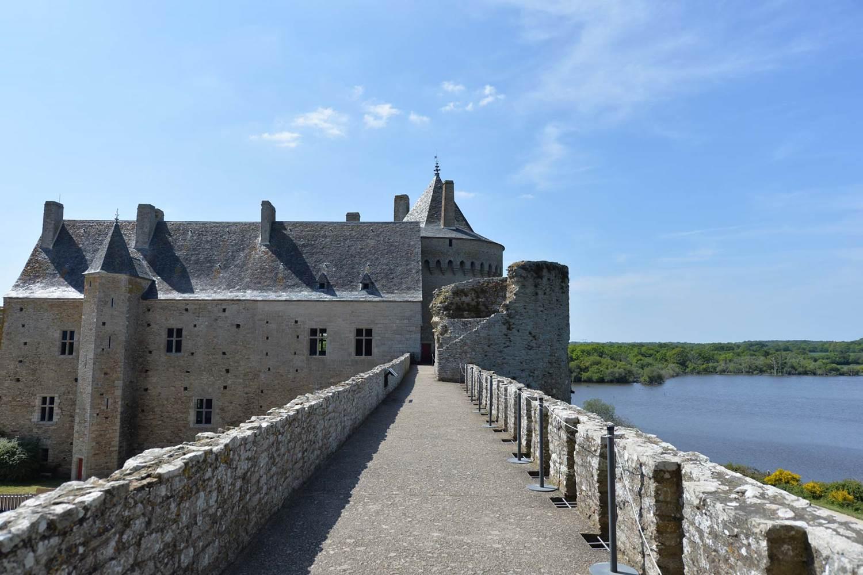 Domaine de Suscinio - Sarzeau - Morbihan - Bretagne Sud-03 © Michel RENAC