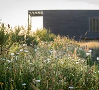Natural slow life expérience à l'Eco-Hôtel Spa Yves Rocher