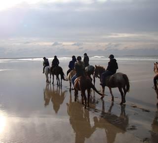 Centre équestre des Dunes