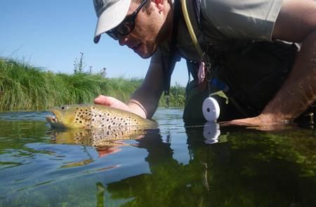 Pêche en Pays de Questembert et Rochefort-en-Terre