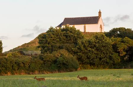 Tumulus Saint Michel à Carnac