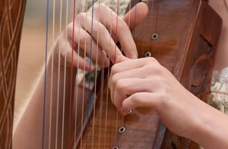 Festival de musiques celtiques (sous réserve)