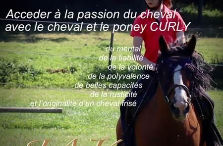 Jak Equita - centre équestre - Poney Club