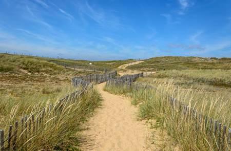 Balade nature : Les dunes d'Erdeven